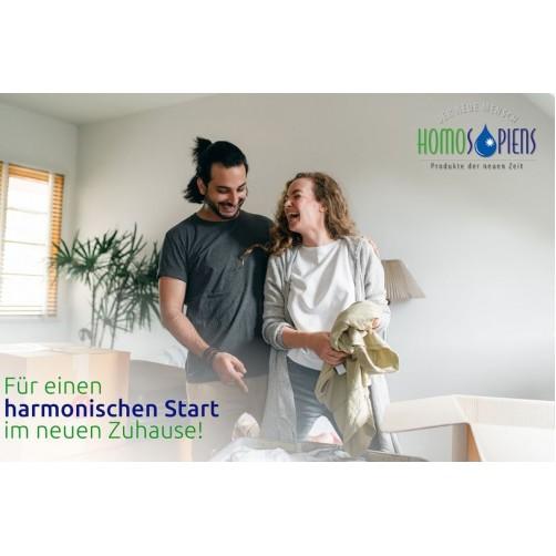 Haus- und Wohnungsharmonisierung - Analysegespräch